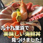 九十九里 海鮮丼